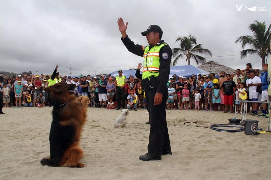 Canes amaestrados por la Policía nacional. Manabí, Ecuador.