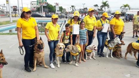 Clausura curso canino, equipo amarillo