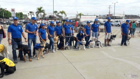 Clausura curso canino, equipo azul