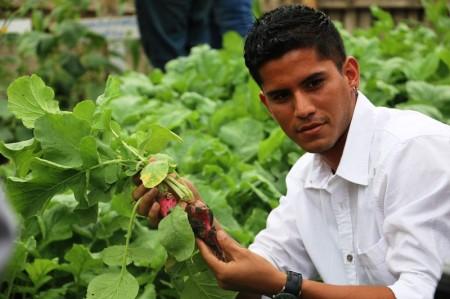 Estudiante de agronomía de la ULEAM muestra un rábano cosechado en uno de los huertos urbanos que cultiva la comunidad. Manabí, Ecuador.