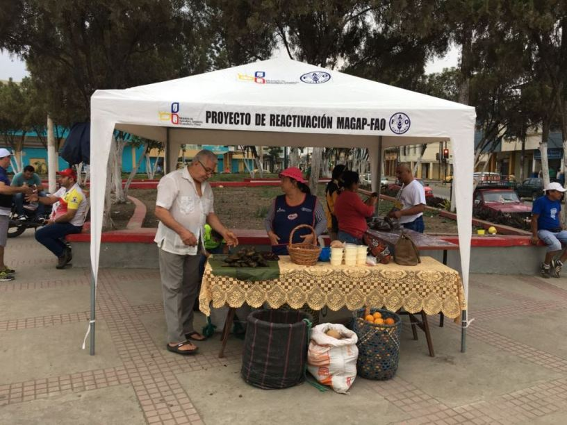 Muestra de productos agrícolas en la Plazoleta Elio Santos Macay de Chone. Manabí, Ecuador.