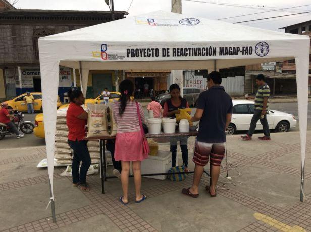 Muestra de productos agrícolas en una feria solidaria de Chone. Manabí, Ecuador.
