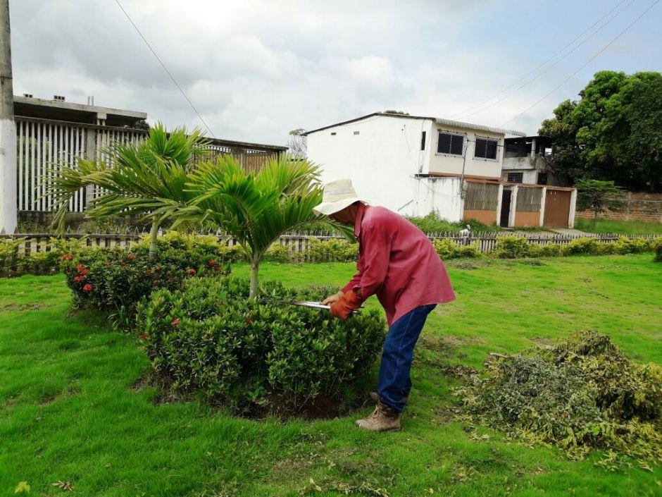 Patricio Zambrano Romero, jardinero de los parques de la ciudad de Chone. Manabí, Ecuador.