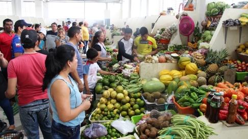 Productos frescos del campo tropical.