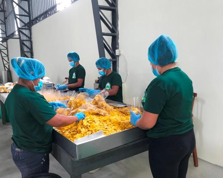 Proceso de envasado de chifles (rodajas) de plátano Del Campo, Paján. Manabí, Ecuador.