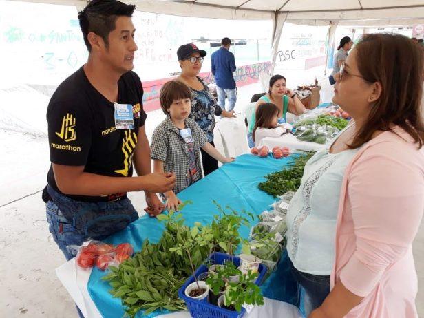 Stand con hortalizas orgánicas frescas en una expoferia de Manta. Manabí, Ecuador.