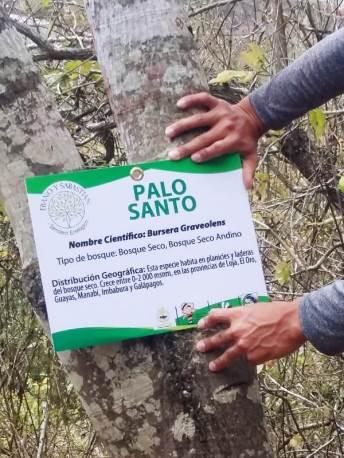 La Unesum ha identificado hasta ahora unas 23 especies de flora en el Cerro Montecristi.