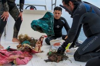 Cuerdas de nylon que pescadores habían arrojado al agua encima del arrecife.