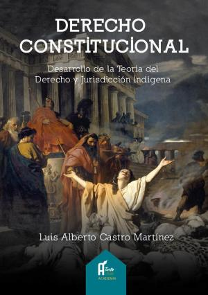 """Portada del libro """"Derecho Constitucional. Desarrollo de la Teoría del Derecho y Jurisdicción Indígena"""". Manabí, Ecuador."""