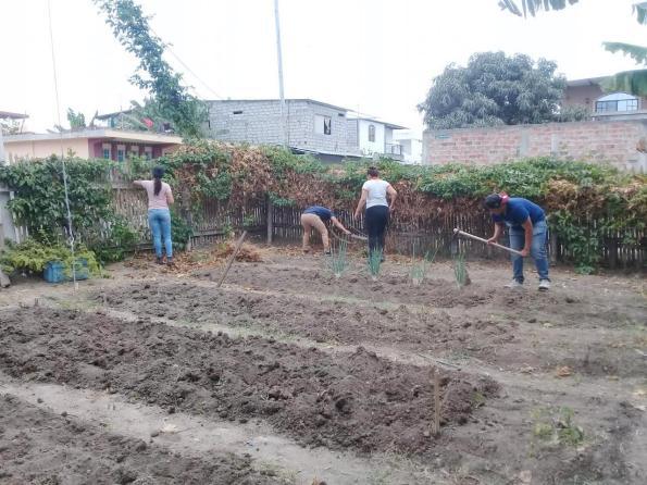 Estudiantes de ingeniería agrícola contribuyen con sus conocimientos y esfuerzo personal para la construcción de los huertos que se cultivan en la ciudad de Manta.